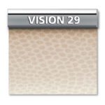 VISION-29