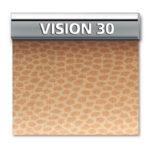 VISION-30