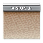 VISION-31